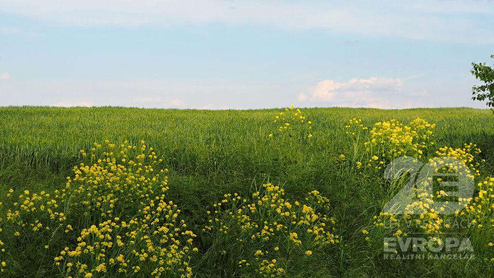 Prodej pozemku v obci Předboj o celkové ploše 20 954 m2